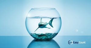 עסקים קטנים ובינוניים - כל מה שצריך לדעת לפני שפותחים עסק קטן